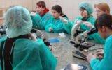 Szkolne laboratorium weterynaryjne