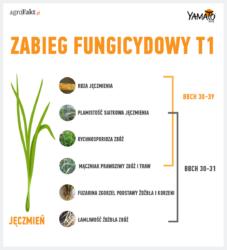 zabieg fungicydowy T1