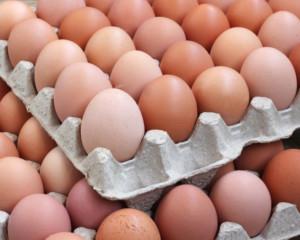 paleta jaj