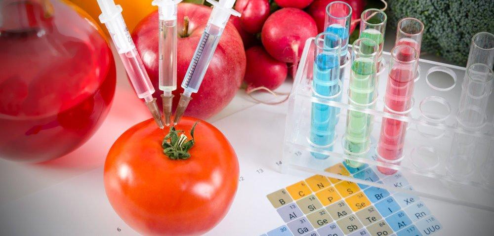 Uprawy GMO pod kontrolą – nowe przepisy!
