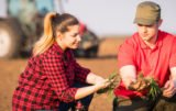 Gdzie i po co zdobyć wykształcenie rolnicze?