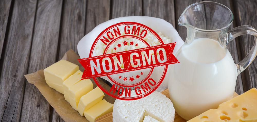 Produkty mleczne NON GMO – problem rolnika