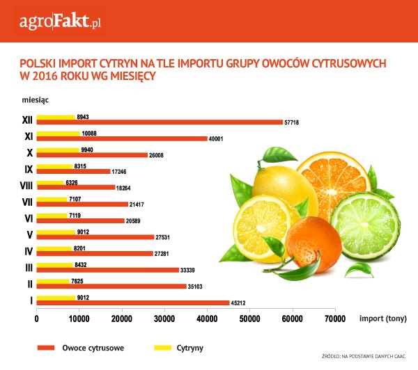 import cytrusów do polski