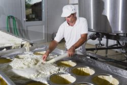 Przetwórca mleczny