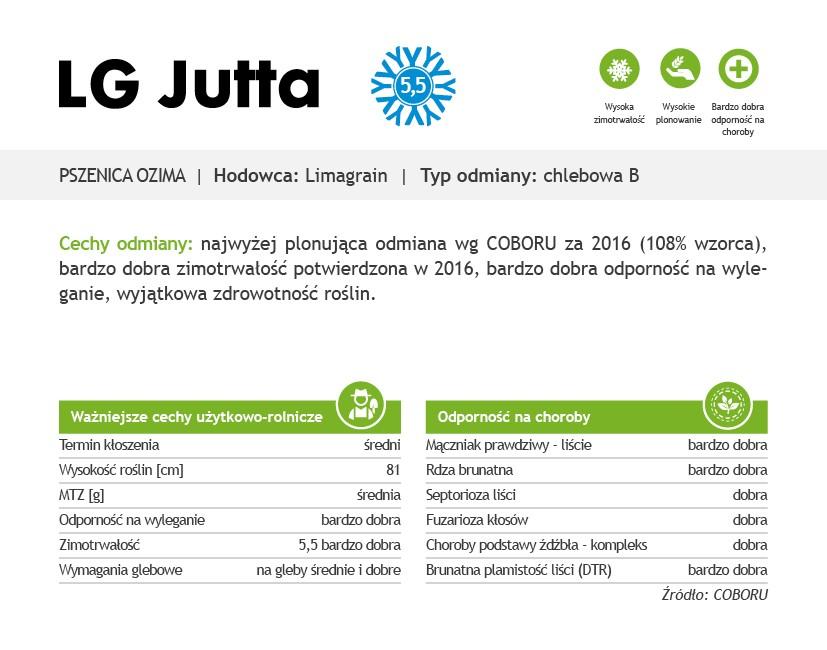 pszenica LG Jutta