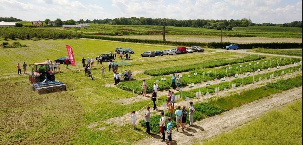 Lubelski Ośrodek Doradztwa Rolniczego