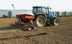 normy wysiewu zbóż ozimych