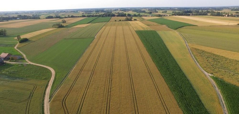 Informacje rolnicze – gdzie ich szukać?