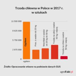 Pogłowie świń wPolsce w2017 r.