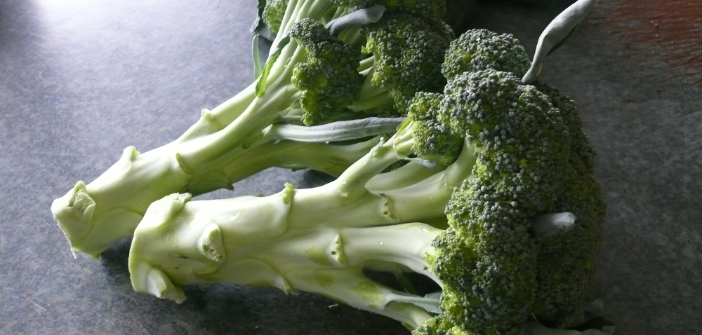 Jak uprawiać brokuły iuzyskać nawet dwa plony wroku?