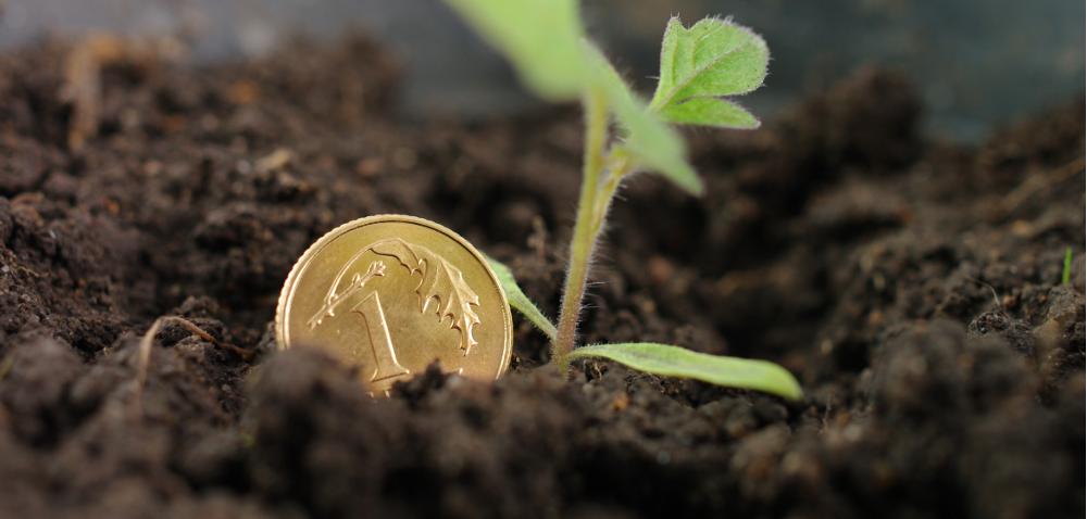Ruszyły dopłaty do ubezpieczeń upraw rolnych
