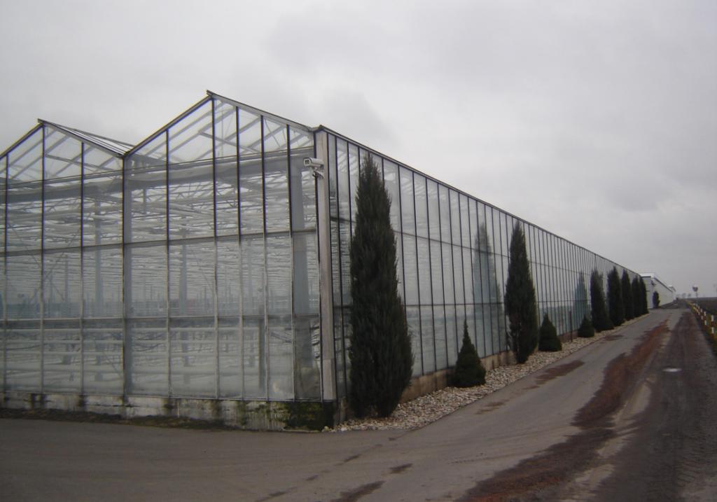 Rolne grupy producenckie sporo inwestowały wostatnich latach wswój rozwój