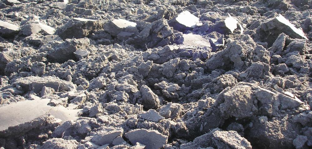 Badanie gleby jesienią, czyli ostatnie kuszenie rolnika