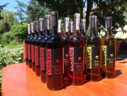 butelki polskiego wina