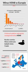 Wirus H5N8 wEuropie