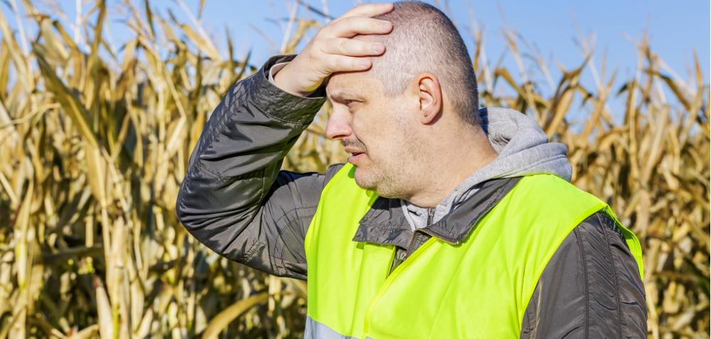 Nieumyślne spowodowanie śmierci aOC rolnika