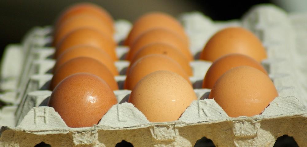 Wzrost cen jaj niemal każdego dnia – co jest przyczyną?