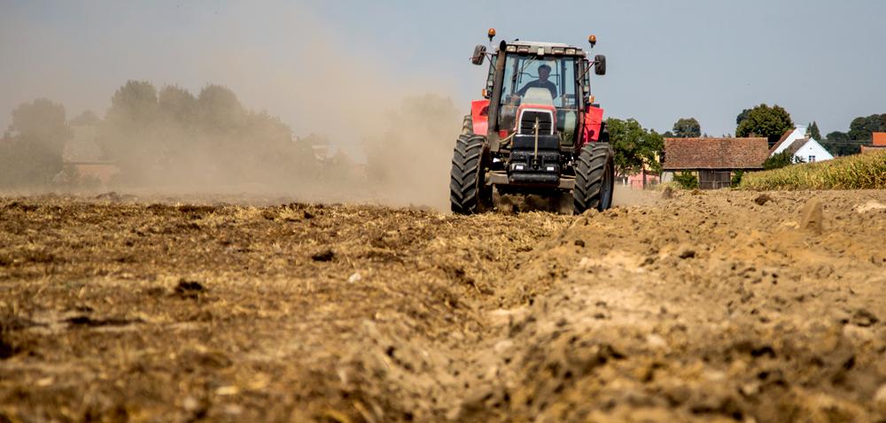 Ubezpieczenie upraw rolnych zdopłatą – znamy limit na 2018 rok