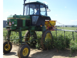 Kadry dla rolnictwa - praktyki zagraniczne