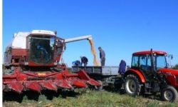 Kurs rolniczy daje uprawnienia do obsługi kombajnu