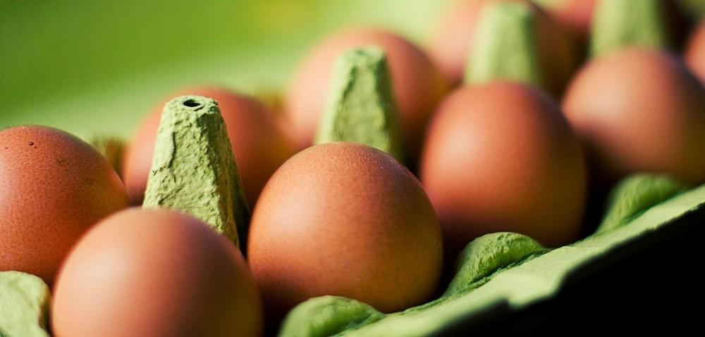Ceny jaj rosną – ile będzie trzeba za nie zapłacić pod koniec roku?
