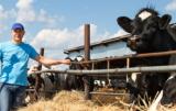 Producenci mięsa w Polsce