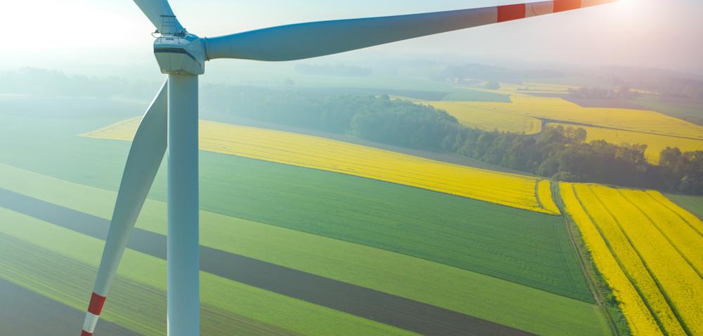 Farmy wiatrowe na wsi – walka oprzetrwanie