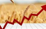 Rynek zbóż w Polsce
