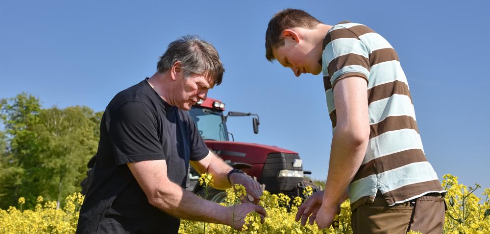 Agronomia – jak pomoże podnieść dochodowość naszych upraw?