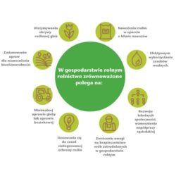rolnictwo zrównoważone na czym polega