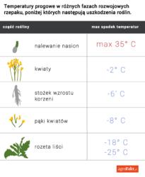 tabelka-temperatur