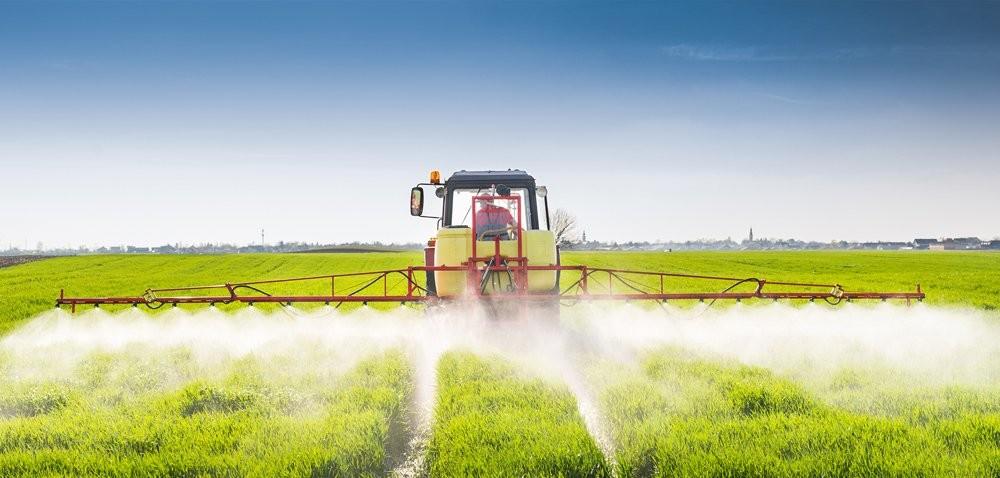 Ochrona fungicydowa zbóż – mieszaniny czynią cuda!