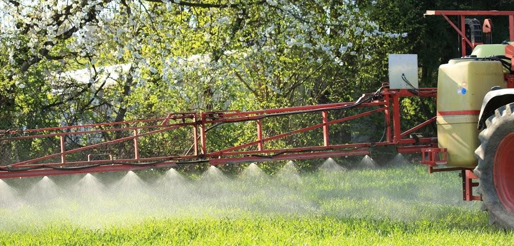 Fungicyd do ochrony zbóż iportfela [INFOGRAFIKA]