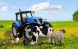 Zwierzęta gospodarskie na wsi
