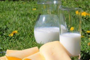 Jakie są ceny skupu mleka?