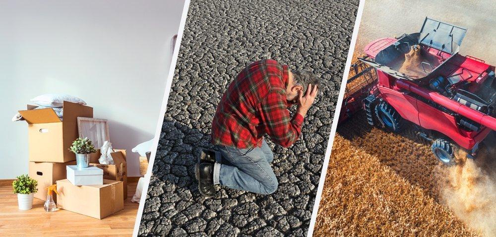 Rolnicy stracili ponad pół miliarda złotych przez suszę! To jeszcze nie koniec! [Aktualności]