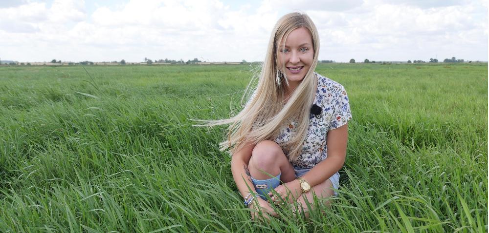 Trwałe użytki zielone – efekt zwalczania chwastów (wideo)