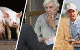 aktualności rolnicze