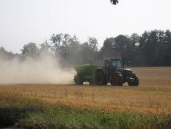 kalkulacja uprawy pszenicy ozimej
