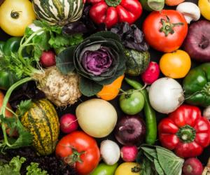 Eksport warzyw zPolski – jakie prognozy na 2019?