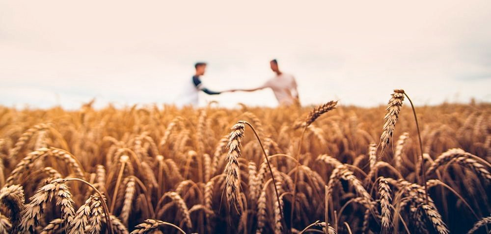 Pomoc finansowa dla nowych grup iorganizacji producentów rolnych