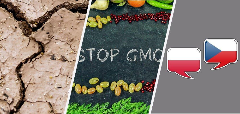 Żywność wolna od GMO – to się uda! [Aktualności]