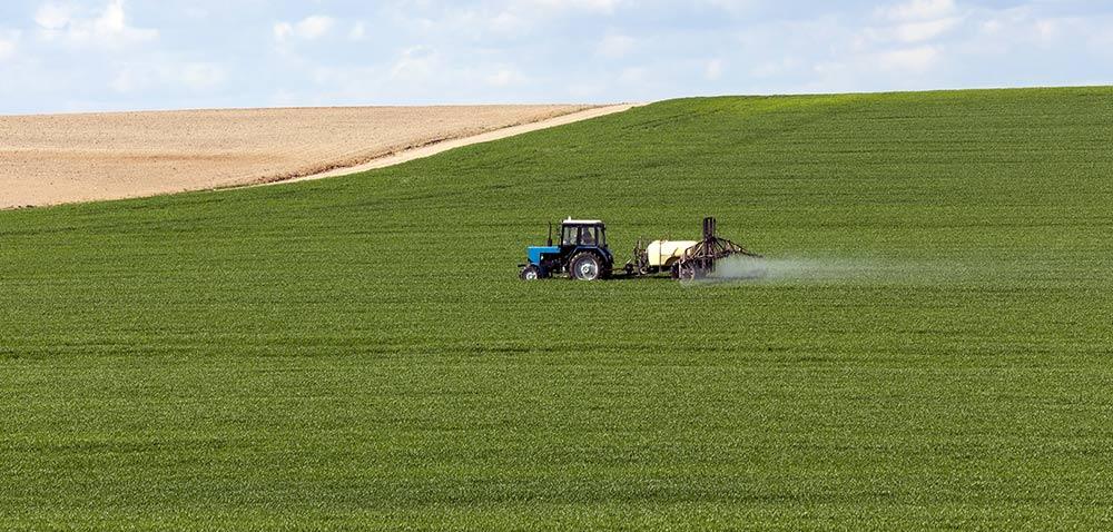 Regulacja wzrostu zbóż, awarunki pogodowe