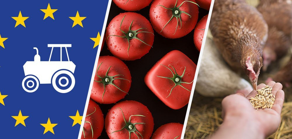 Jakość żywności zależna od lokalizacji? Koniec podwójnych standardów! [Aktualności]