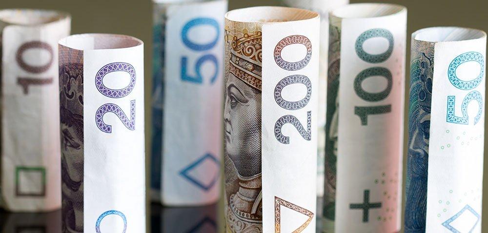 Pieniądze dla poszkodowanych przez ASF [AKTUALNOŚCI]