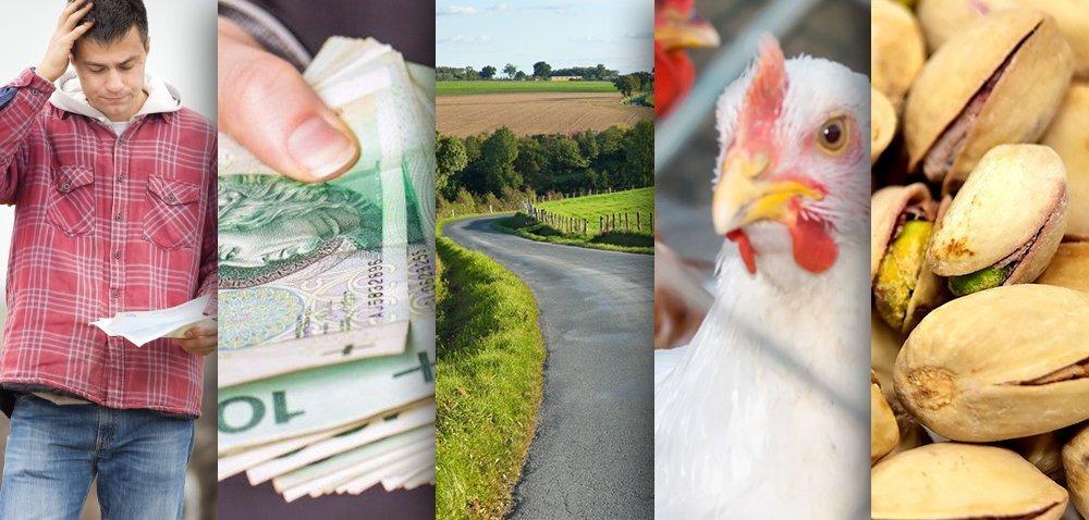 Ciekawostki rolnicze w100 sekund. Zbyt niska pomoc unijna?
