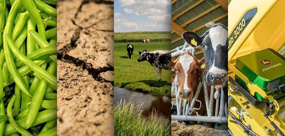Ciekawostki rolnicze w100 sekund. Skład mleka skrywa tajemnice?