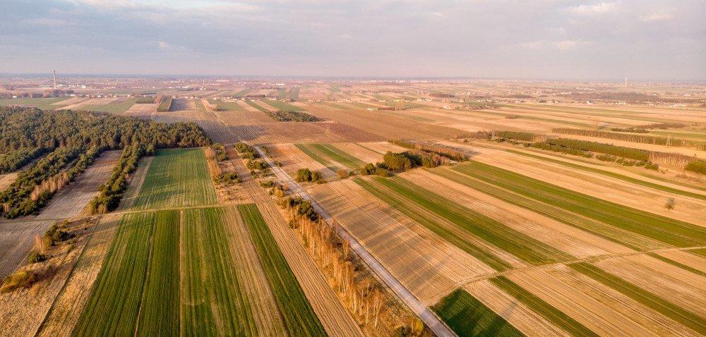 Ilu rolników ma 100 ha lub więcej?