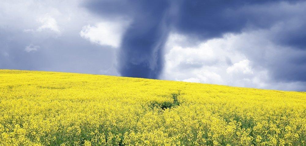 Polscy rolnicy płacą za anomalie pogodowe za dużo