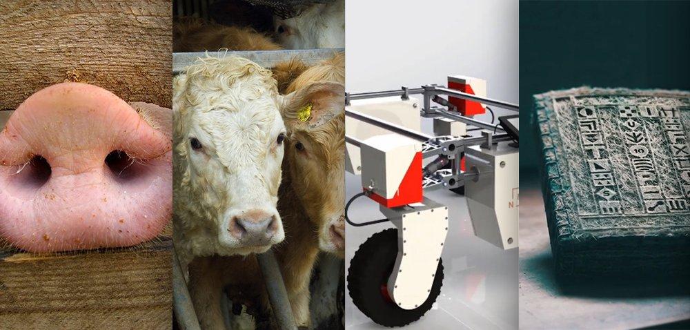 Ciekawostki rolnicze w100 sekund. Roboty rolnicze